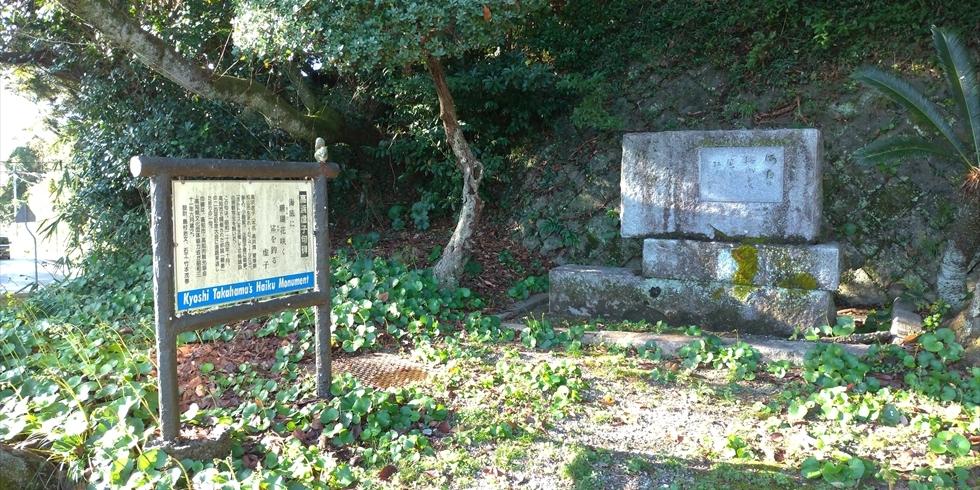 高浜虚子句碑 ー 桂浜公園
