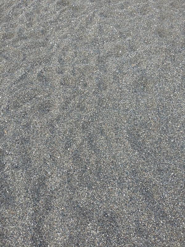 桂浜で五色の石(1)