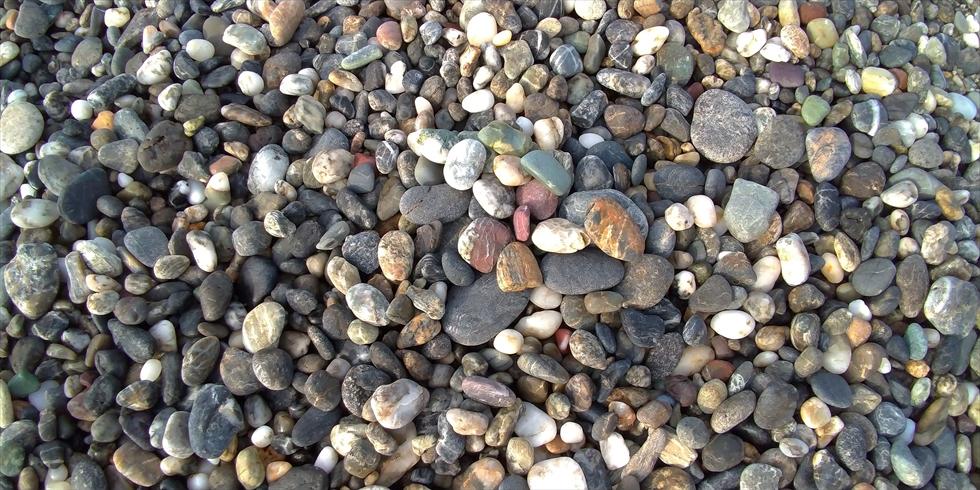 桂浜で五色の石(3)