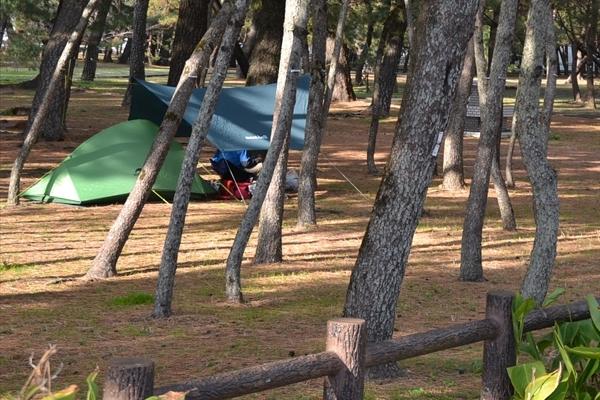 千松公園キャンプ場