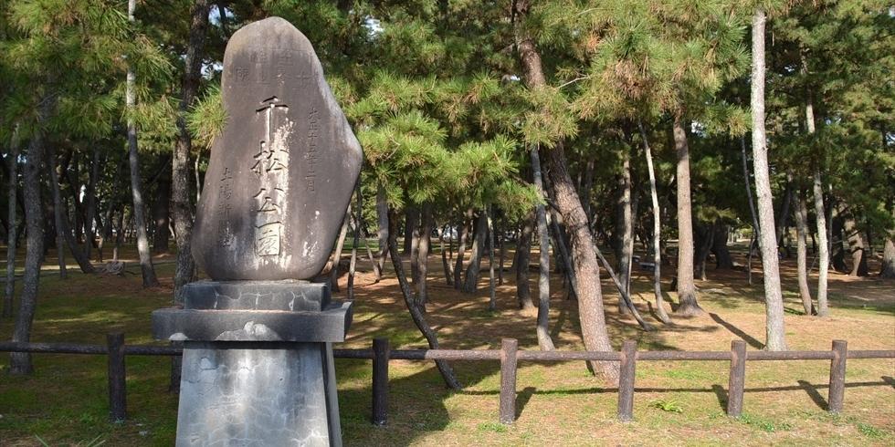 桂浜 種崎千松公園でキャンプやバーベキュー