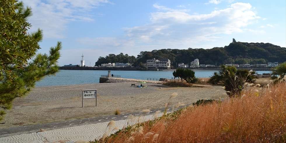 桂浜 種崎千松公園の海岸