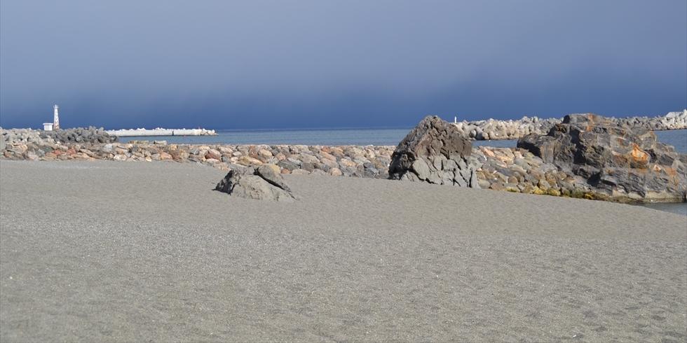 桂浜の夫婦岩(夫婦岩アップ)