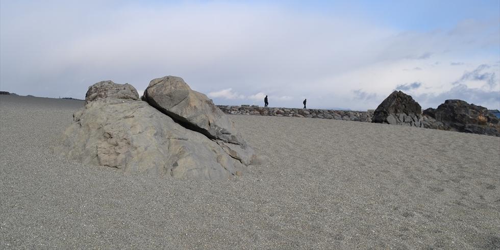 桂浜の夫婦岩(現在の様子)