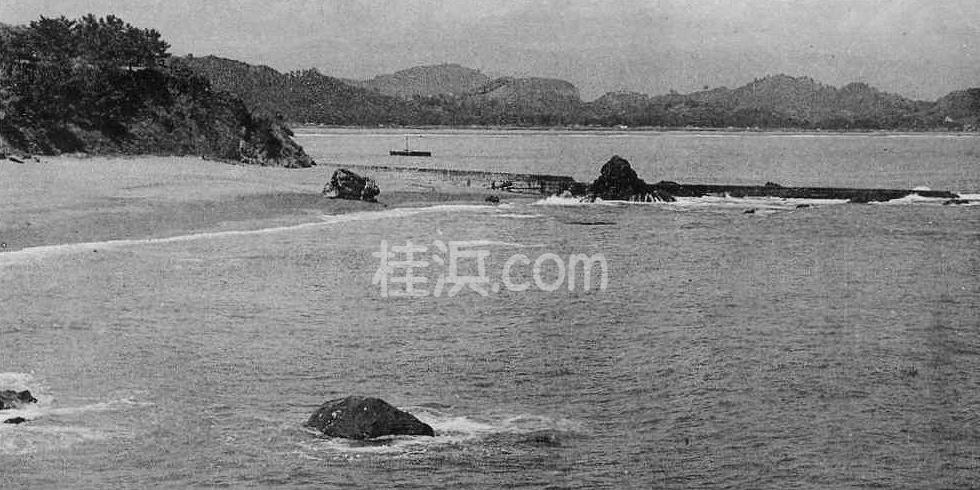 桂浜の夫婦岩(竜王岬から撮影)