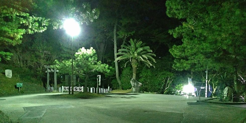 桂浜の夜の坂本龍馬の銅像