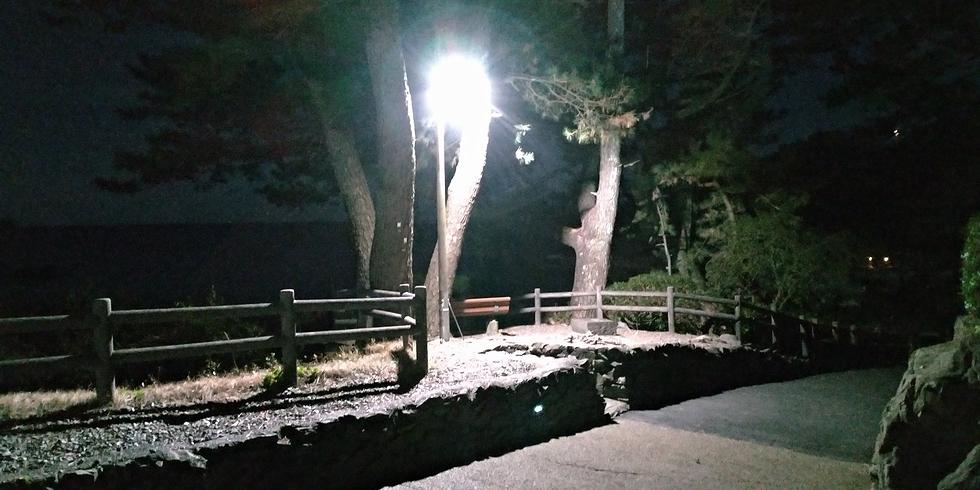 桂浜の夜の電灯(インスタポイント)