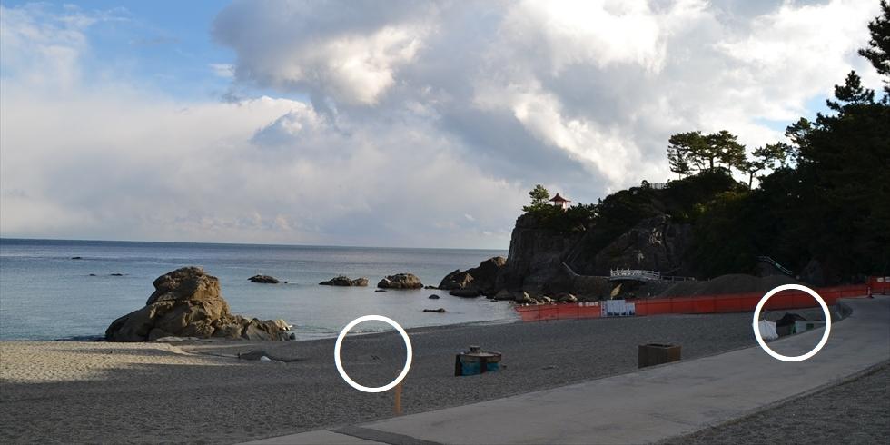今の桂浜 (竜王岬を望む3)
