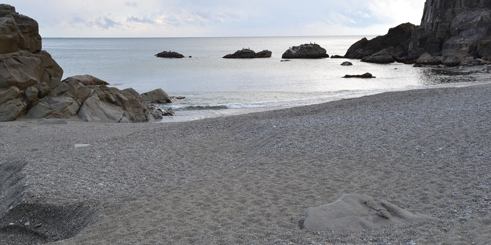 今の桂浜 (竜王岬方面を望む)