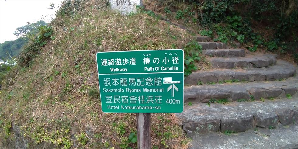 桂浜の椿の小径(起点)