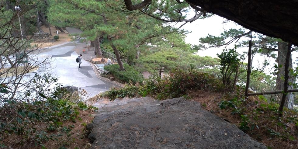 桂浜の椿の小径(登り口(2))