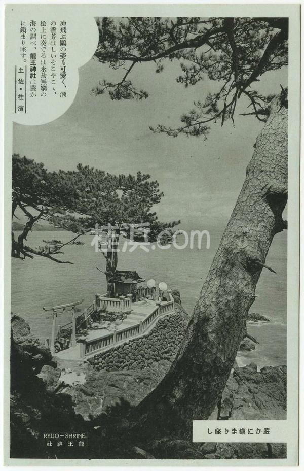 桂浜の古い絵葉書(龍王神社)