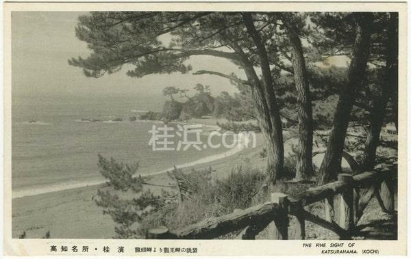 桂浜の昭和初期の絵ハガキ(竜頭岬から望む)