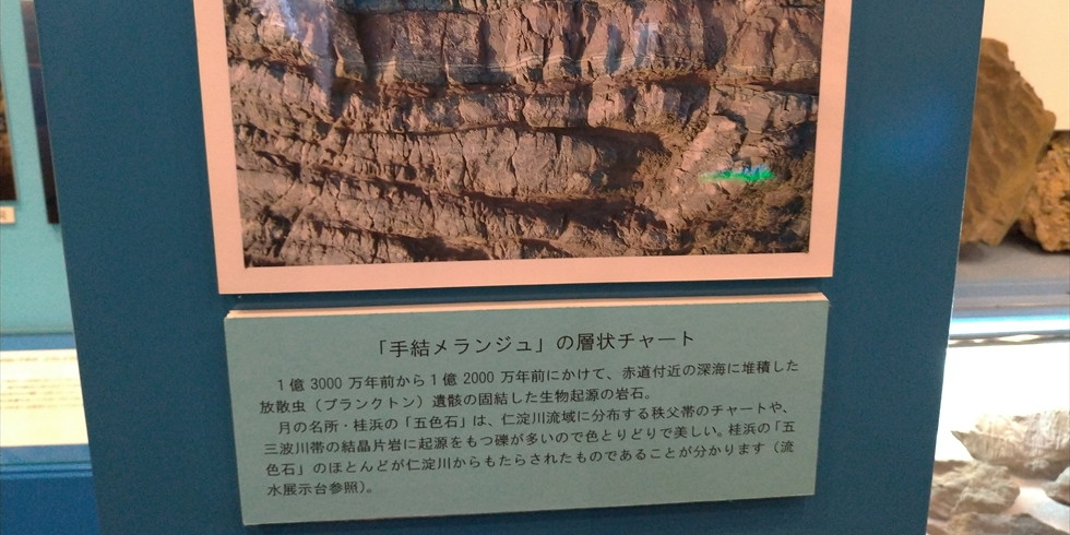 佐川地質館と桂浜の五色の石(手結メランジュ)