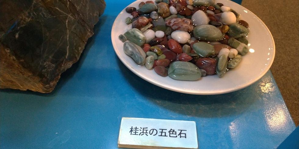 佐川地質館と桂浜の五色の石(桂浜の石)1