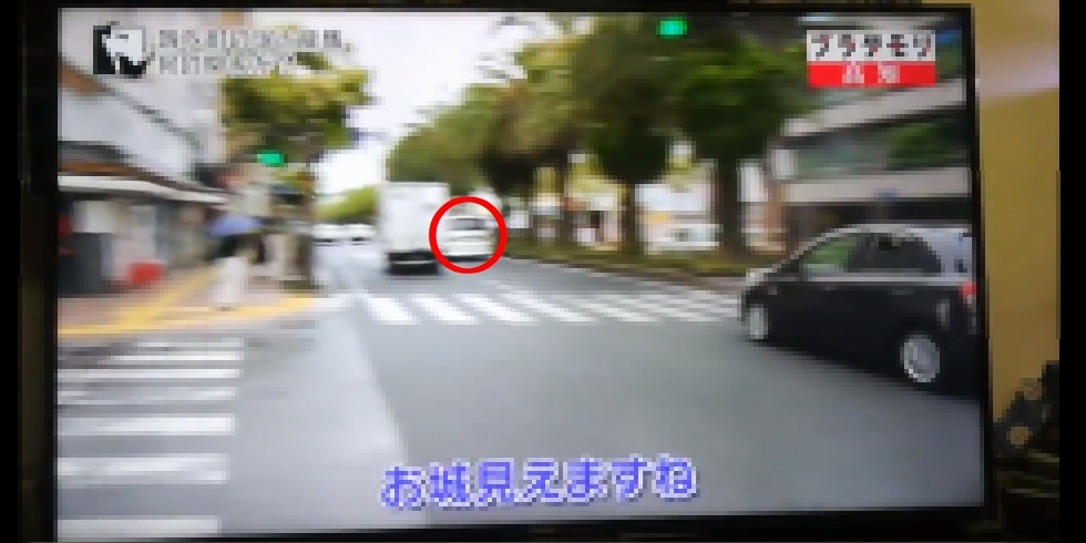 ブラタモリ(高知編)タモリさんと共演