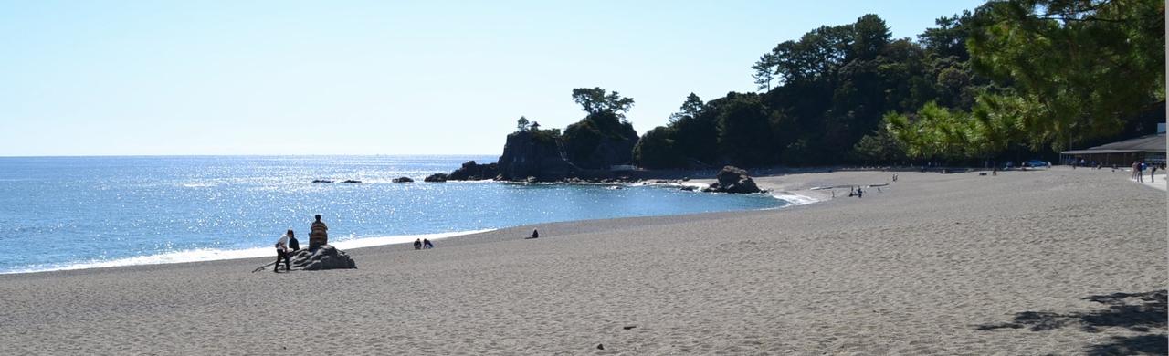 桂浜の本浜ビーチ