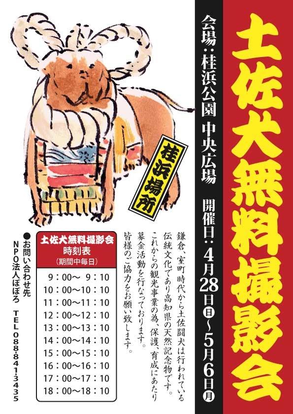 土佐犬無料撮影会(2019年ゴールンウィーク)