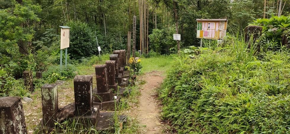 岡田以蔵の「お墓」への道順(12)
